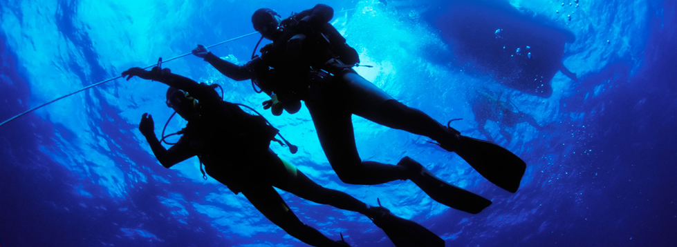 Tenerife-Diving-centre-DC-1