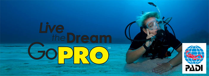 padi-instructor-course-idc-tenerife-canary-islands
